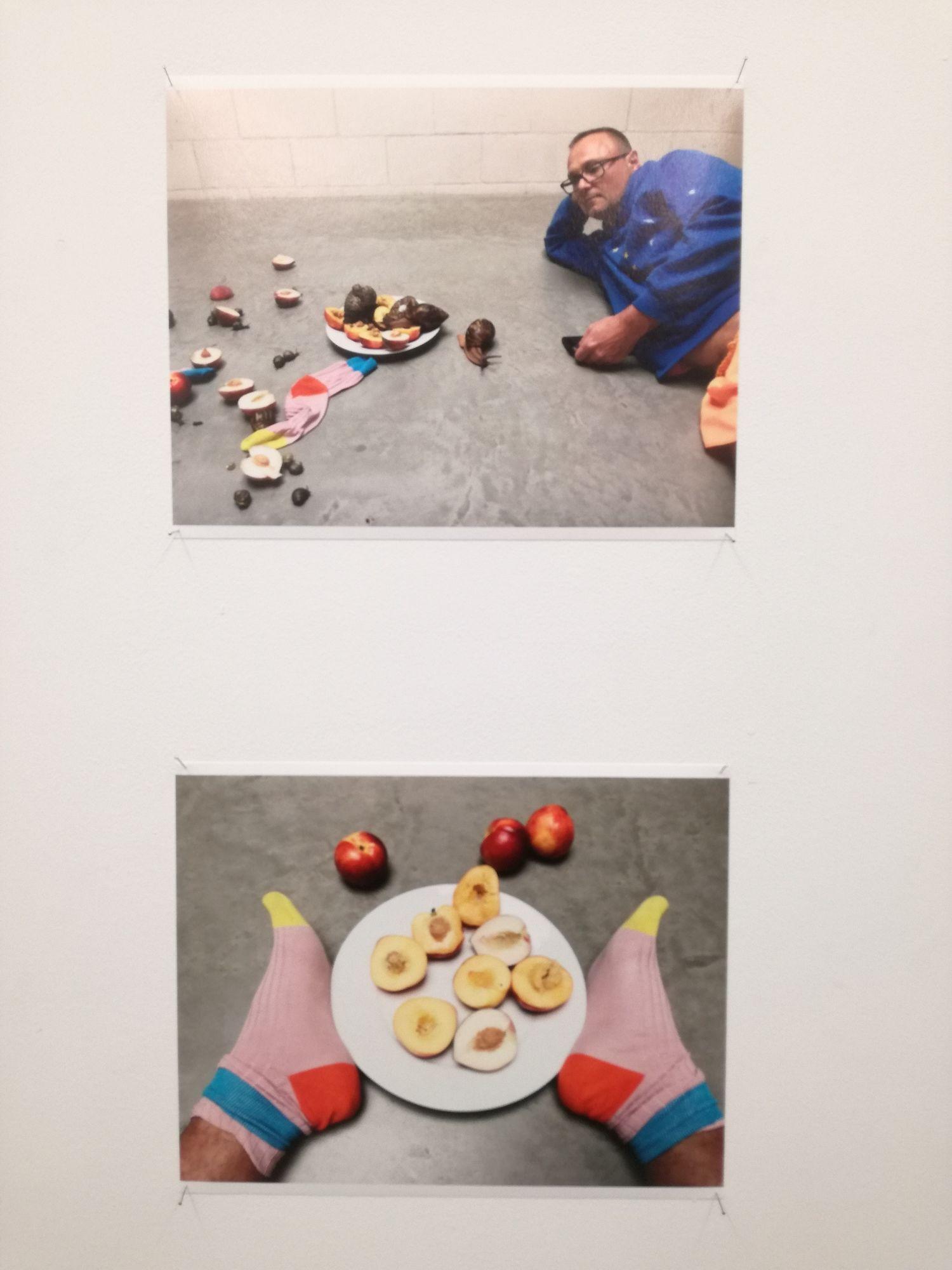 SUZANNE TARASIEVE : Juergen Teller 'Leg, snails and peaches' (13 JANUARY – 03 MARCH 2018)