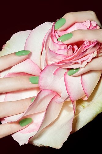 FLOWERS & HANDS by CARINA JAHN