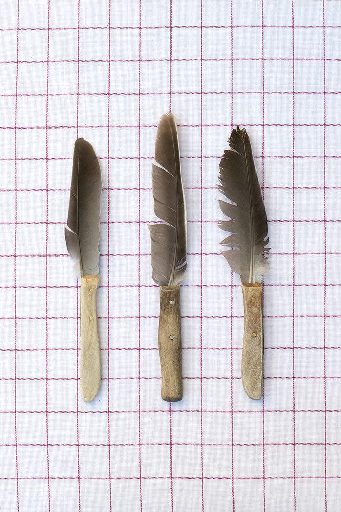 EMEIS DEUBEL: Sarah Illenberger - The Nature of Things