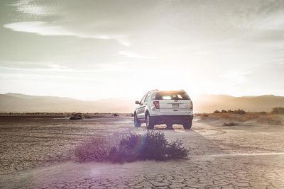 Mojave Desert by ROBERT WUNSCH