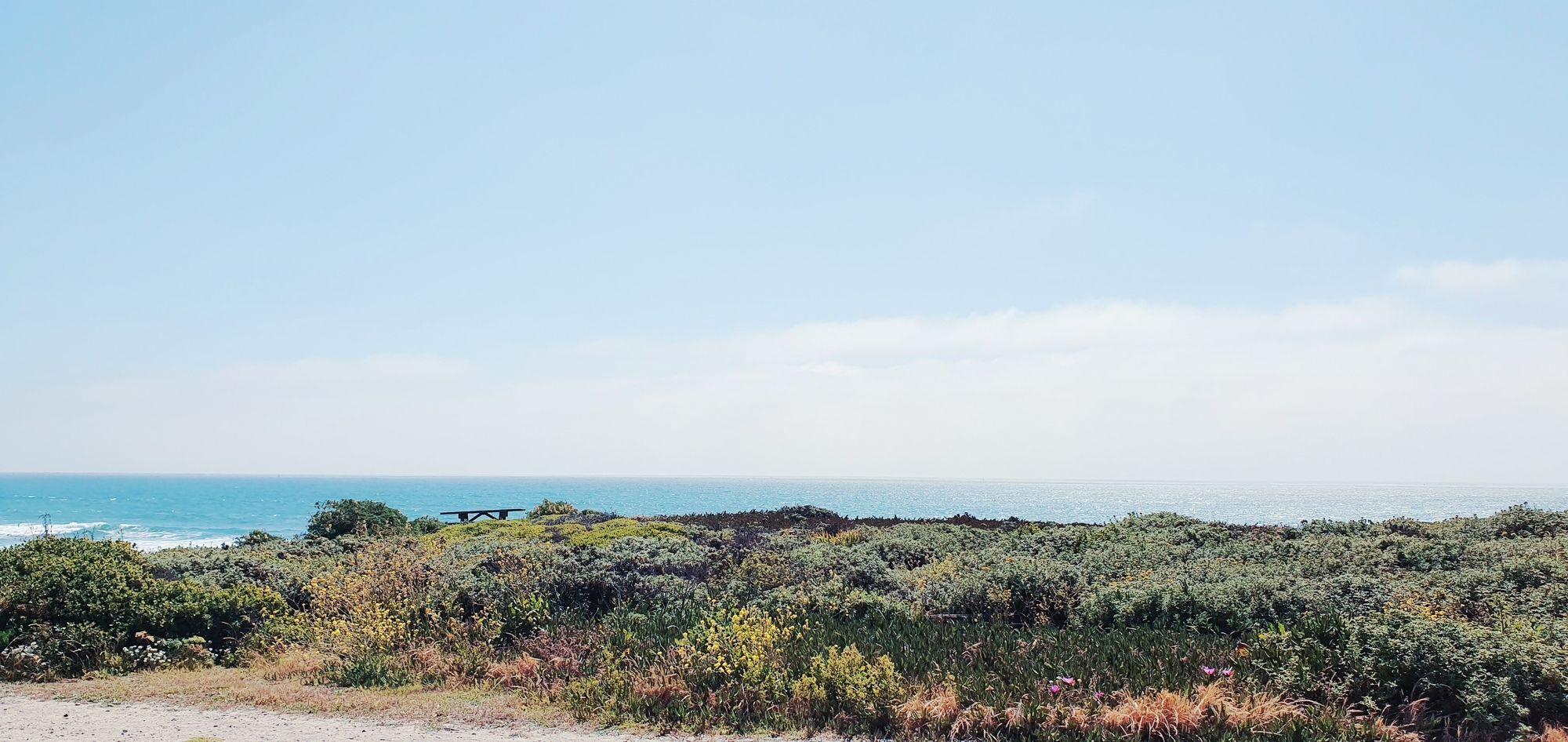 GOSEE - Half Moon Bay
