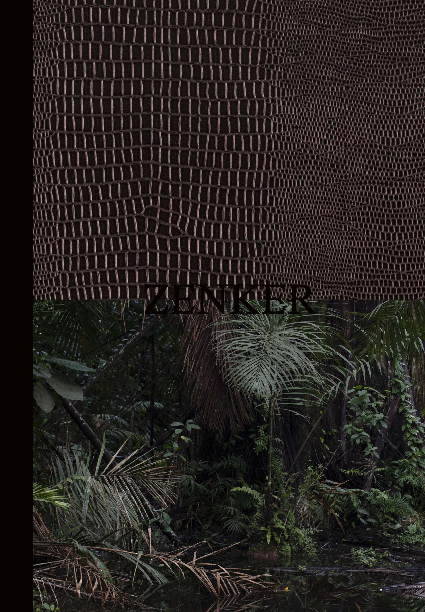 """Jonas Feige, Yana Wernicke, """"Zenker"""", Edition Patrick Frey 2021"""