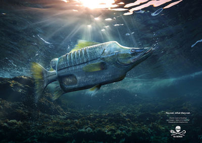 "Platinum c/o ANALOG/DIGITAL for Sea Shepherd ""Plastic Fish"""