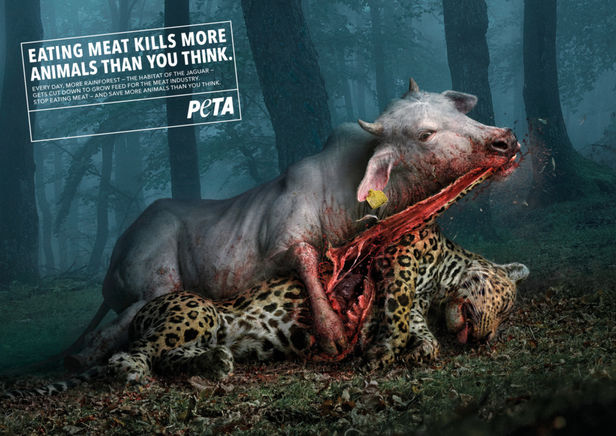"Analog/Digital & Illusion for PETA - ""The Killer Cows"""