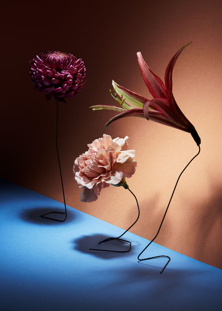 'Florosence' by Christoffer Dalkarls c/o AGENT MOLLY & CO