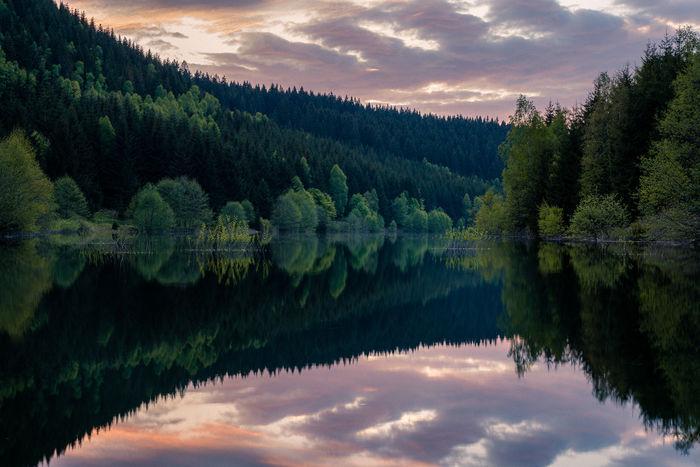 UPFRONT PHOTO & FILM GMBH: Jan Eric Euler for Thüringer Waldquell