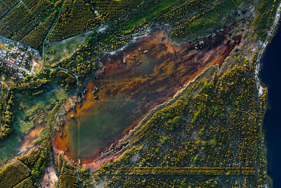 man made lands - coalmining renaturation