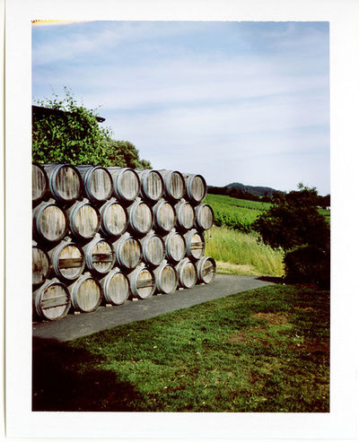 Jake Stangel c/o GIANT ARTISTS shot for a story on California wines in Bon Appétit Magazine