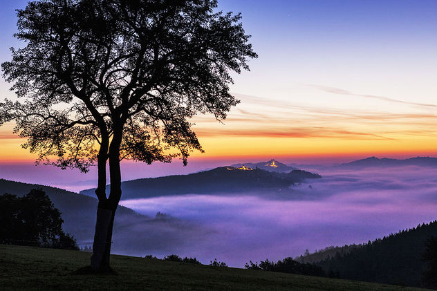 """EDITION LAMMERHUBER presents """"Die schönste Landschaft der Welt"""""""