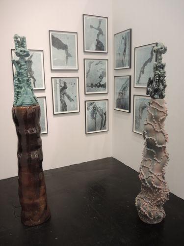 ART COLOGNE 2014 : Galerie Daniel Buchholz