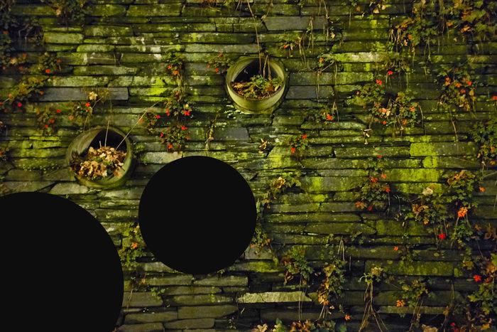 VISUAL ARTIST PHOTOGRAPHER ANJA ZANDER / KYD NO.8