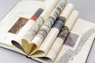 GOSEE SHOP: New cooperation digital art book - beautiful books in small editions