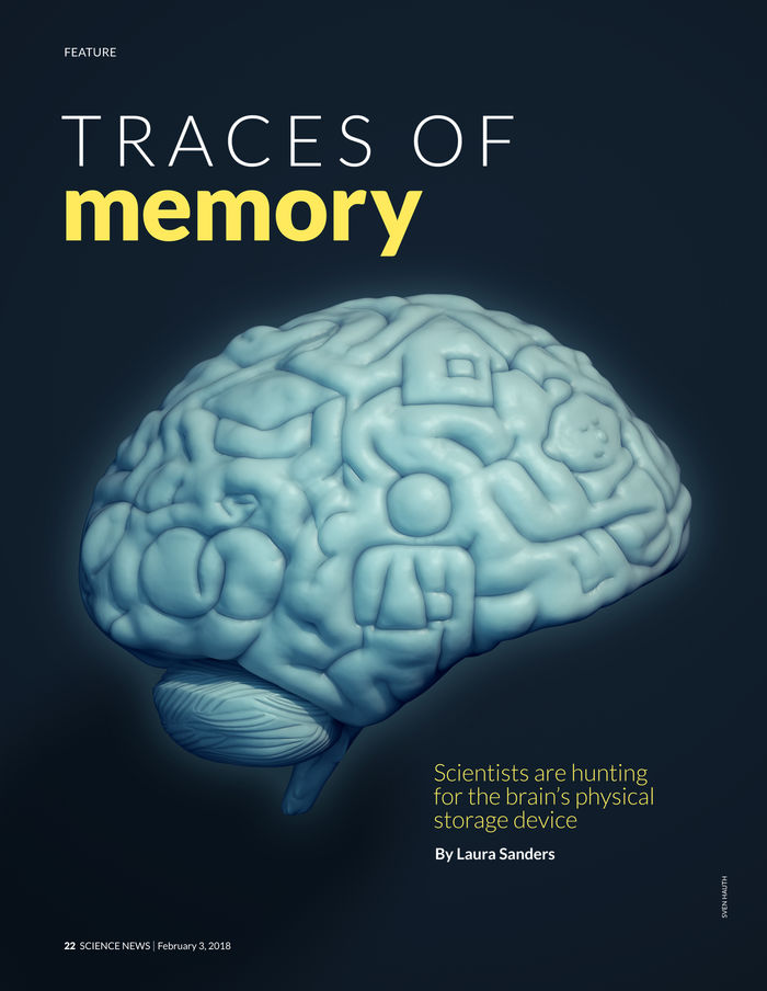 Traces of memory