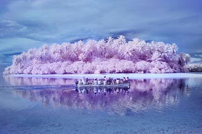 Sanne De Wilde 'The Island of the Colorblind' (KEHRER VERLAG)