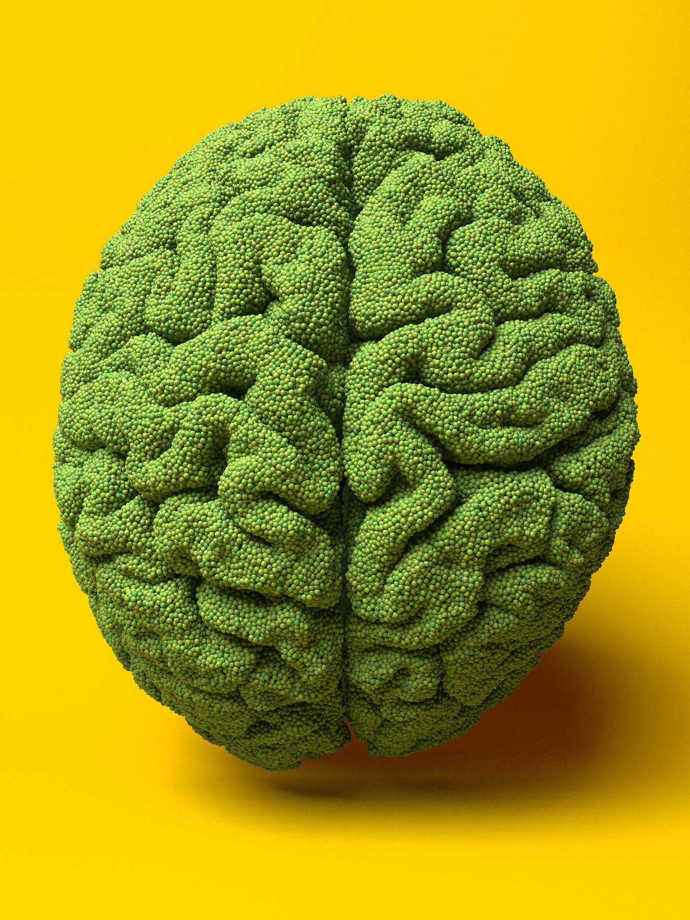 Organic Food - Pea Brain