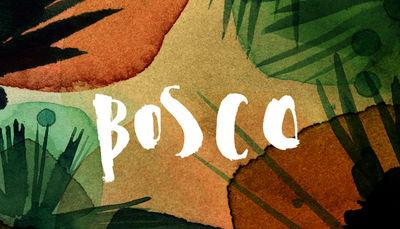 for Bosco