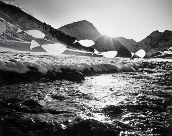 BRIDGEMAN ART LIBRARY : JASCHI KLEIN
