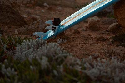 WILDFOX RUNNING: Manuel Nagel for BMW i3