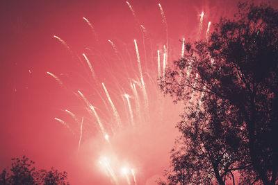 GoSeeAWARDS15 - SCREENINGS BRONZE for NICOLA CARIGNANI