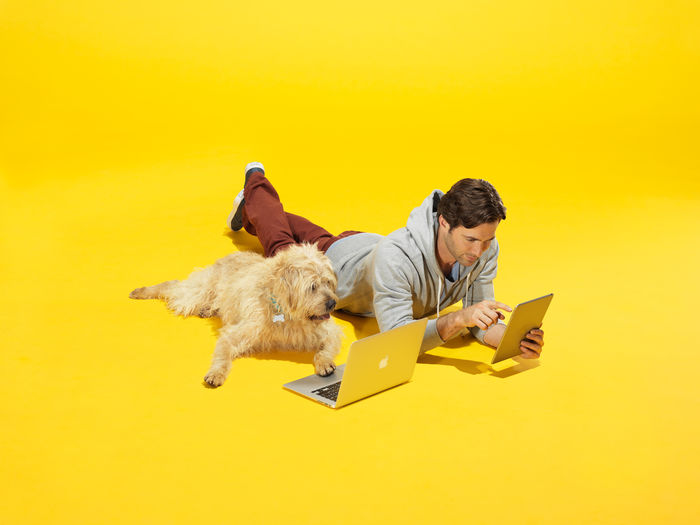 Justin Fantl c/o GIANT ARTISTS shot playful images of furry friends for Petco.