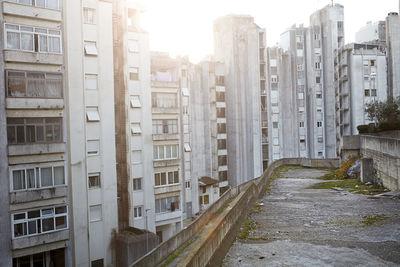 Concrete Jungle by Achim Lippoth