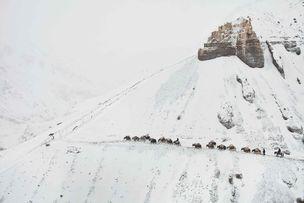 Pamir - Vergessenes Volk auf dem Dach der Welt by Mareile & Matthieu Paley