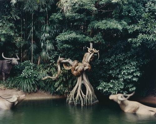 STEPHEN WIRTZ GALLERY : Catherine Wagner, Jungle Cruise: Tokyo, 1995