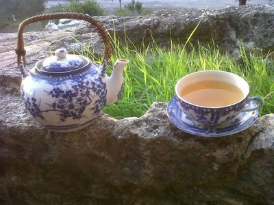 Oolong Tea from CHINA in a Japanese Tea Set