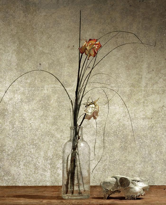 Still and live 2, FRAWA BüRO FüR GRAFIK UND FOTOGRAFIE, Frank Wassmann, free antwork