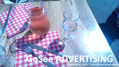 GOSEE 1