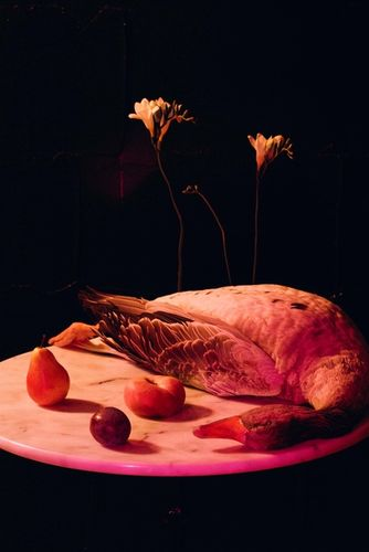 Mathilde Karrèr flower goose
