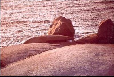 Seascape,Marine Geology,Calvie Bay,in the Evening Light