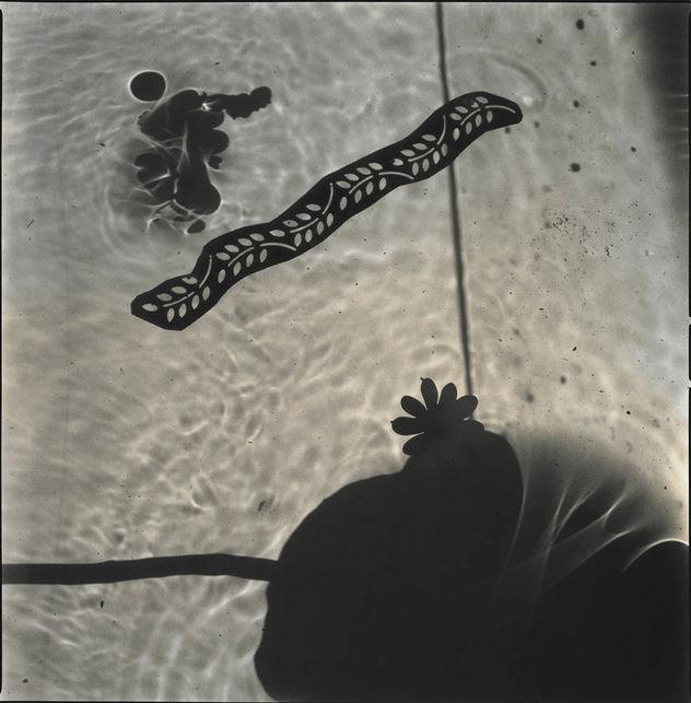 HIROSHI WATANABE 'Lotus Dreams' (Mar 14 - Apr 27, 2019, Benrubi Gallery)