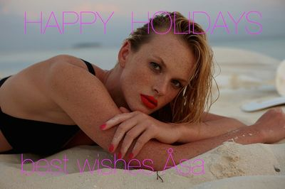 ASA TALLGARD - Happy Holidays !