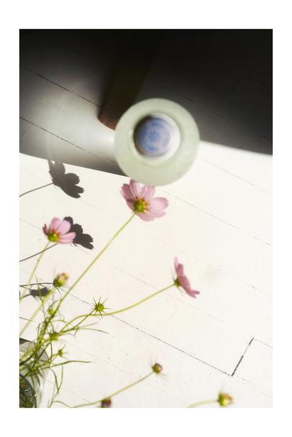 'HOPE' FUNDRAISER FOR AFGHANISTAN - Get your print at ere.earth/gallery  .... by ERE Foundation, Stefan Dotter & Sabrina Herzog