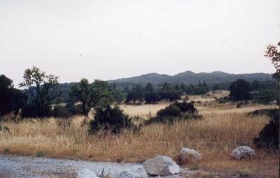 Provence Landscape,Villeneuve les Avignon