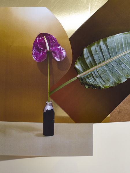 'What is natural' by Studio Likeness c/o KLAUS STIEGEMEYER