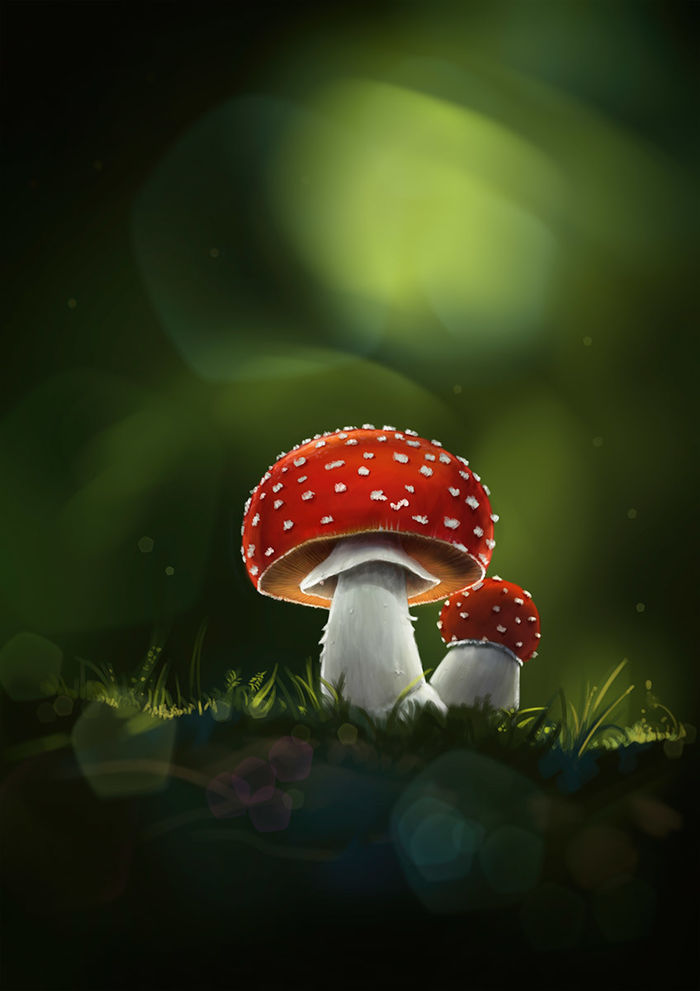 Fly agaric • digital painting   RALF KUNSTMANN ILLUSTRIERT...
