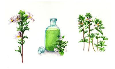 kerstin-luttenfeldner-carolineseidler.com-1jahrservusmagazin-4