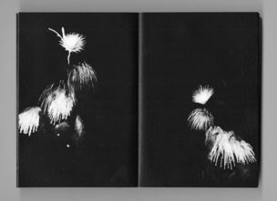FIREWORK STUDIES by Pierre Le Hors