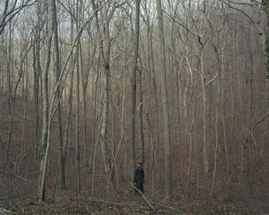 STEPHEN WIRTZ GALLERY : Alec Soth, 2006_03zI0016 (Monk in Woods), 2006