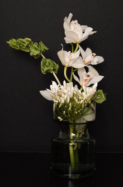 New Artist : Valentina TEINITZER c/o BIGOUDI, Floral Stylist & Botanical Set Designer 'Emotions with flowers'