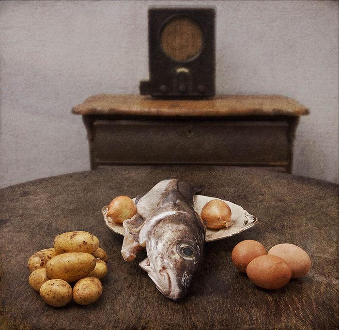 Butter bei die Fische art projekt BüRO FüR GRAFIK UND FOTOGRAFIE