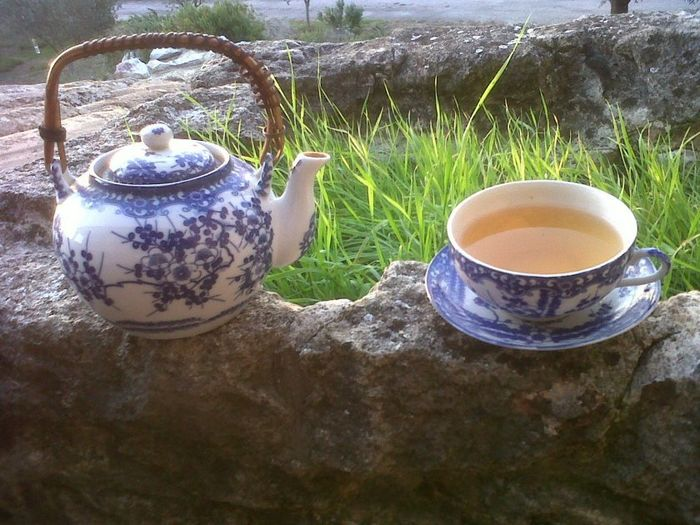 Oolong Tea from China in Provence