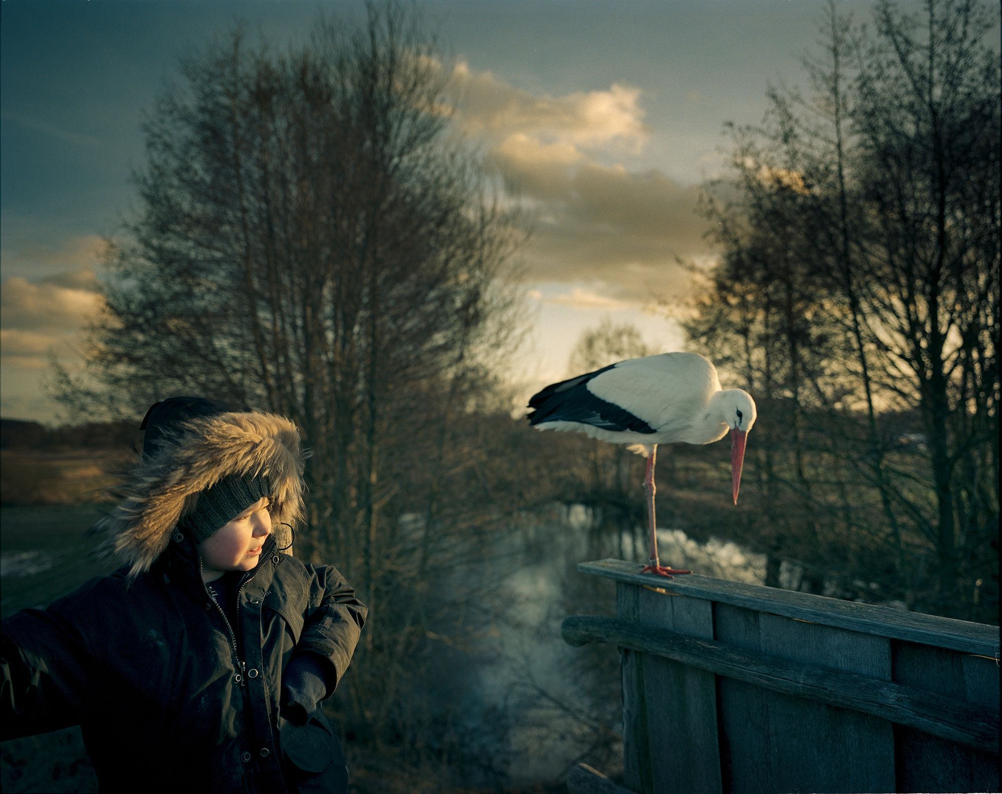 THE HELSINKI SCHOOL THE NATURE OF BEING, VOL 6  : Joakim Eskildsen
