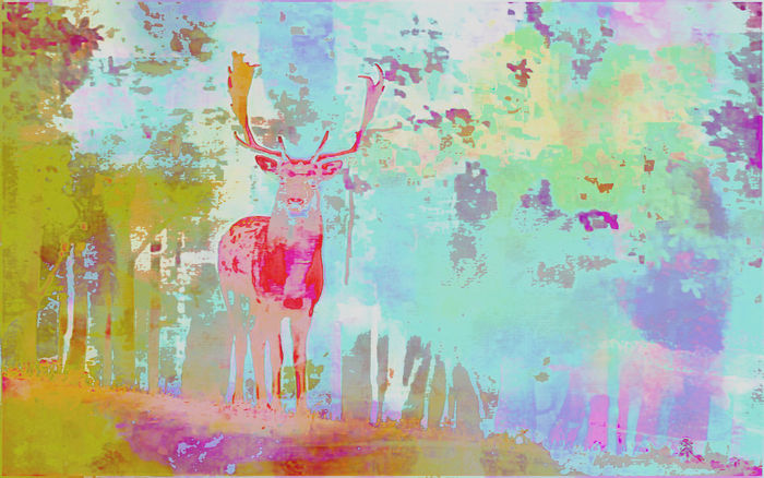 Deer Colorful Mixed Media Art