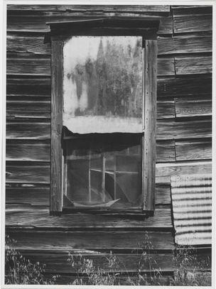 Ansel Adams, Window, Bear Valley, California, 1973 (WestLicht, Wien)