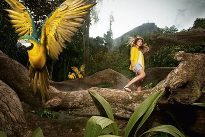 21 SUN PRODUCTIONS - BRAZIL