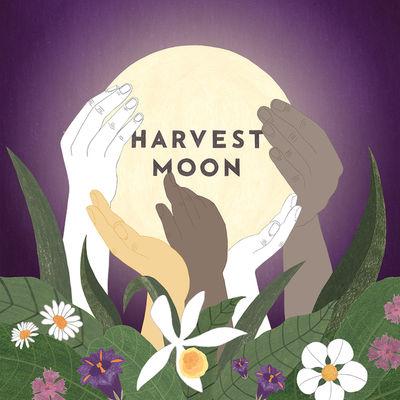 WILDFOX RUNNING: Melanie Gandyra for Harvest Moon
