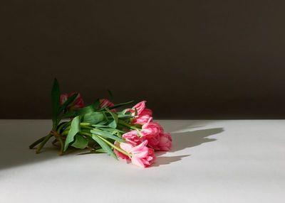 Roberto Badin c/o MARLENE OHLSSON PHOTOGRAPHERS 'Flowers + Fruits'